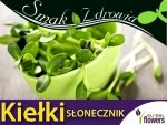 Nasiona na Kiełki - Słonecznik - (Helianthus) 40g