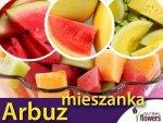 Arbuz, mieszanka odmian (Citrullus lanatus) 1g, nasiona