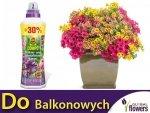 COMPO Nawóz do roślin balkonowych 1,3L