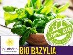 BIO Bazylia właściwa zielona ITALIANO CLASSICO nasiona ekologiczne 0,5g