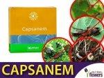CAPSANEM 2x250 milionów nicieni (do zwalczania gąsienic, opuchlaków, turkucia podjadka)