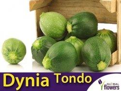 Dynia Zwyczajna - cukinia Tondo chiaro di Nizza (Cucurbita moschata) 3g LUX