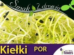 Nasiona na Kiełki - Por (Allium porrum) nasiona 1,5 g