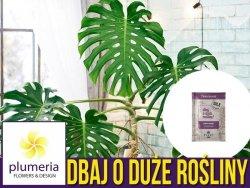Dbaj o duże rośliny - 100% naturalny suchy nawóz w pałeczkach 40 g