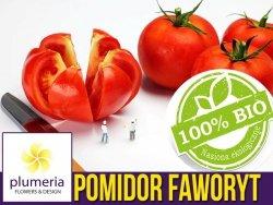 BIO Pomidor gruntowy wysoki FAWORYT nasiona ekologiczne 0,2g