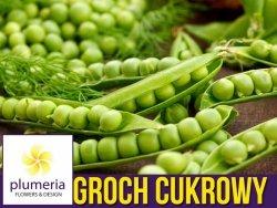 Groch Cukrowy IŁÓWIECKI zielony groszek (Pisum sativum) nasiona 40g