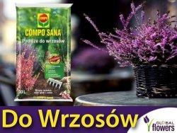 Podłoże do wrzosów, wrzośców, hortensji i magnoli COMPO 10L