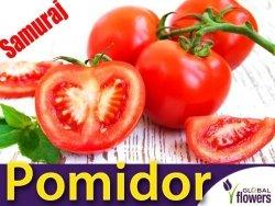 Pomidor karłowy Samuraj (Lycopersicon Esculentum) 0,5g