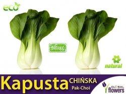 Kapusta CHIŃSKA PAK-CHOI (Brassica chinensis) nasiona 1g