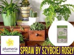 Spraw by szybciej rosły - 100 % naturalny organiczny stymulator wzrostu nawóz 50 ml