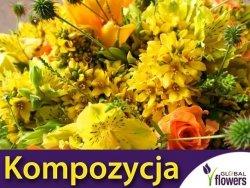 Kompozycja Żółtych Roślin Jednorocznych 1 g nasiona
