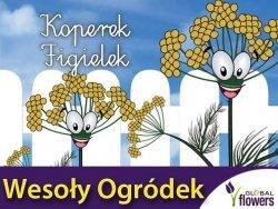 Koperek Figielek Wesoły ogródek
