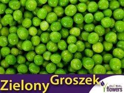 Groch Łuskowy - zielony groszek- Sześciotygodniowy (Pisum sativum) nasiona 40g