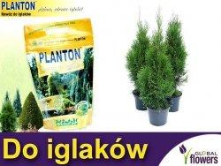PLANTON® Nawóz do iglaków 1kg