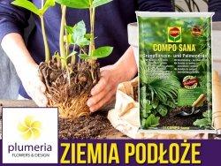 Podłoże do roślin zielonych i palm  COMPO SANA 5L