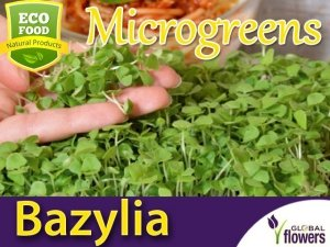 Microgreens - Bazylia Sweet Large 3g