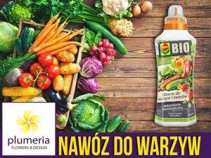 Ekologiczny Nawóz do Warzyw i Owoców COMPO BIO 500ml