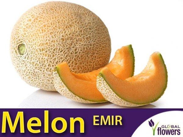 Melon Emir