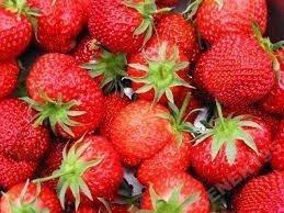 Truskawka owoce przez cały rok