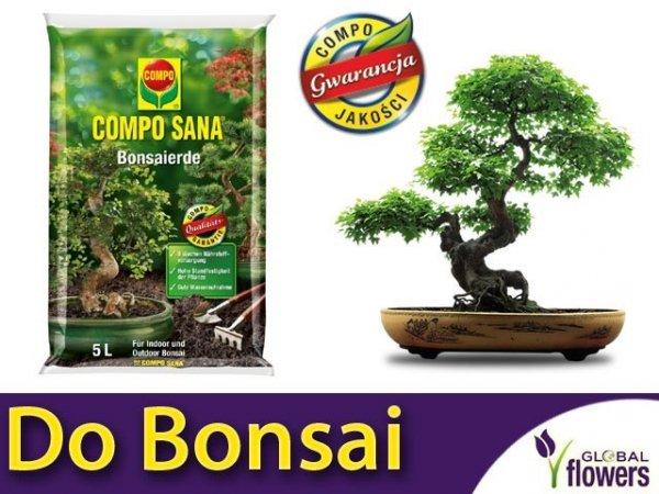 Podłoże do bonsai COMPO 5L