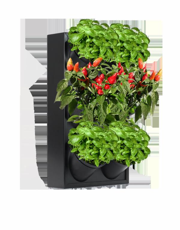 Ogród wertykalny czarny pixel garden PG14