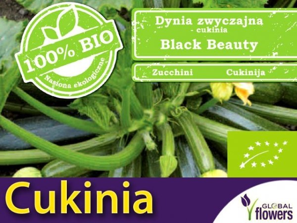 BIO Cukinia Black Beauty 2g