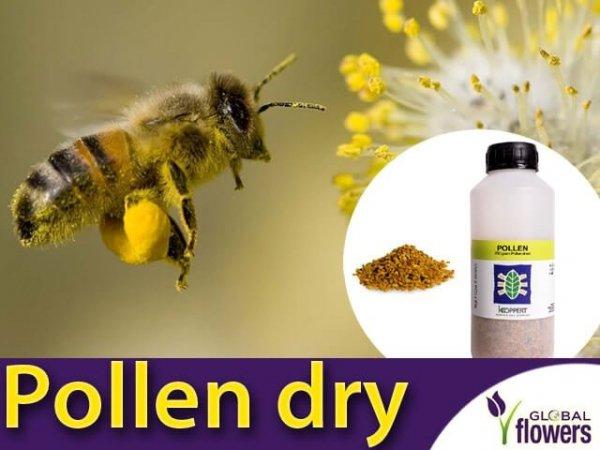 POLLER pyłek  pokarm dla trzmieli pyłek