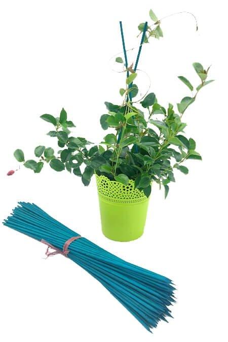 szpilki bambusowe jakie do kwiatów