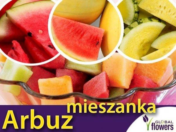 Arbuz, mieszanka odmian nasiona