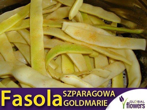 Fasola szparagowa tyczna typu MAMUT GOLDMARIE (Phaseolus vulgaris)