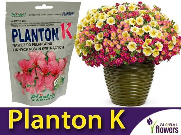 PLANTON® K nawóz do pelargonii i innych roślin kwitnących