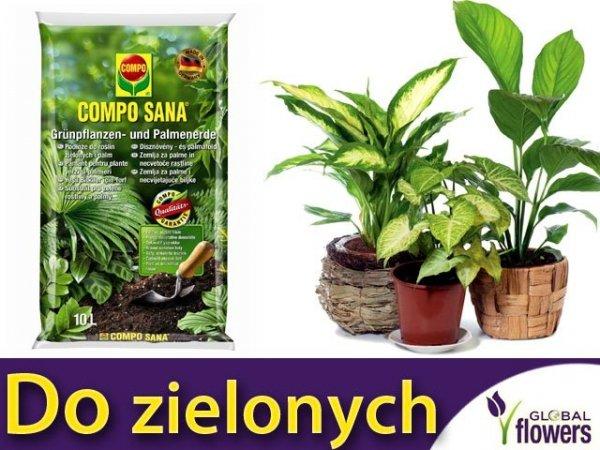 COMPO SANA Podłoże do roślin zielonych i palm 5 l