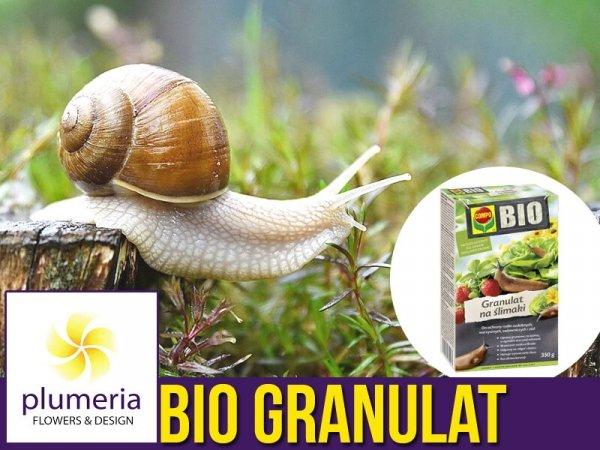 compo bio granulat niezawodny na ślimaki produkt naturalny