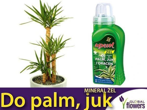 Agrecol Nawóz Mineral Żel do palm, juk i dracen 0,25l