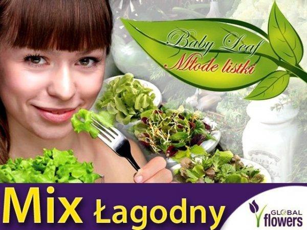 Baby Leaf Mieszanka Łagodna