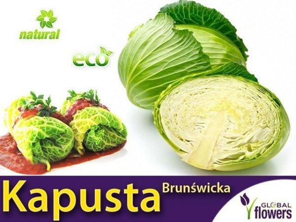 Kapusta Brunświcka - Najlepsza na gołąbki (Convar.Capitatan var. Alba) 500g