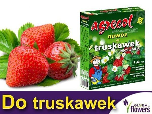 Agrecol Nawóz do truskawek i poziomek 1,2kg