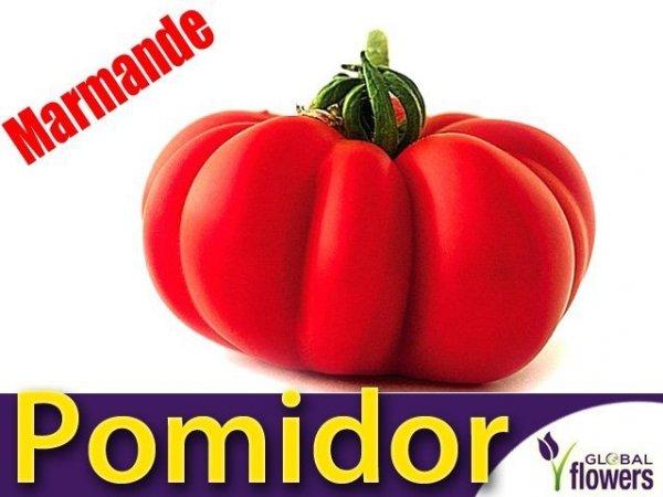 Pomidor Marmande (Lycopersicon Esculentum)
