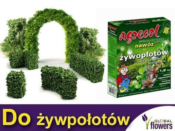 Agrecol Nawóz do żywopłotów, drzew i krzewów ozdobnych 1,2 kg