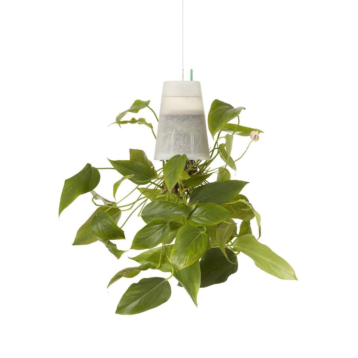 boskke sky planter doniczka wisz ca recycled medium transparentna. Black Bedroom Furniture Sets. Home Design Ideas
