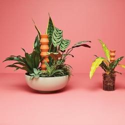 Totem Large urządzenie do podlewania roślin