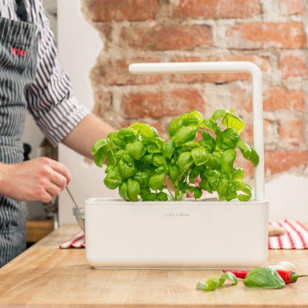 Doniczki Smart Garden samopodlewające Click and Grown