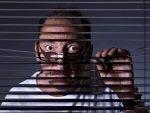 Jak ukryć się przed ciekawskim okiem sąsiada? Zadbaj o swoją prywatność.