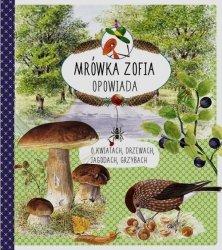 Mrówka Zofia opowiada o kwiatach drzewach jagodach grzybach