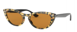 Ray Ban RB 4314N 12483L