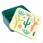 Rex, lunch box, kaktusy