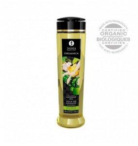 Shunga Natural Massage Oil Organica Green Tea 240ml - olejek do masażu (o zapachu zielonej herbaty)