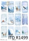 zimowe widoczki, zwierzęta, ptaki*winter views, animals, birds