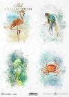 Mini zestaw - Ocean Marzeń, wakacje w tropikach, tropikalna wyprawa*Mini set - Ocean of Dreams, vacation in the tropics, tropical trip