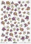 flores, anémonas, ásteres, pequeños elementos*Blumen, Anemonen, Astern, kleine Elemente*цветы, анемоны, астры, небольшие элементы